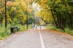 Familia joven feliz que camina abajo del camino afuera en naturaleza del otoño Imagen de archivo libre de regalías