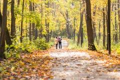 Familia joven feliz que camina abajo del camino afuera en naturaleza del otoño Fotografía de archivo libre de regalías