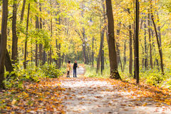 Familia joven feliz que camina abajo del camino afuera en naturaleza del otoño Fotografía de archivo