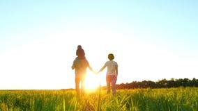 Familia joven feliz que camina en el césped verde que lleva a cabo las manos en fondo de la puesta del sol, en la cámara lenta El almacen de video