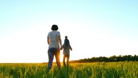 Familia joven feliz que camina en un césped verde, en un fondo de la puesta del sol, en la cámara lenta El papá detiene al niño e metrajes
