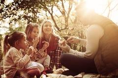 Familia joven feliz que tiene comida campestre junto en parque foto de archivo