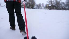 Familia joven que se divierte en el trineo en día nevoso del invierno La gente monta el platillo de la nieve Primer Navidad almacen de metraje de vídeo