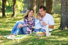Familia joven que tiene una comida campestre en naturaleza Foto de archivo libre de regalías