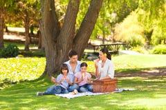 Familia linda que merienda en el campo en el parque fotos de archivo
