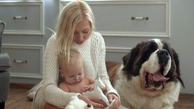 Familia linda que se relaja junto en el sofá con su perro en la manta en sala de estar en casa Madre con el juego del hijo en almacen de video