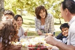 Familia multi feliz de la generación que tiene una comida campestre en un parque foto de archivo libre de regalías