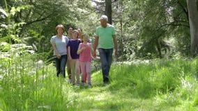Familia multigeneración que camina a lo largo de la trayectoria del arbolado junto almacen de metraje de vídeo