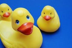 Familia plástica del pato Foto de archivo