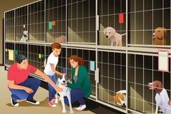 Familia que adopta un perro del refugio para animales Imágenes de archivo libres de regalías