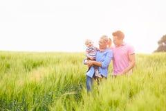 Familia que camina en el campo que lleva al hijo joven del bebé imagen de archivo