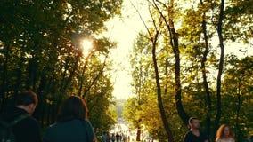 Familia que camina en el parque de la tarde con las atracciones almacen de metraje de vídeo