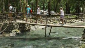 Familia que camina en el puente en bosque de la montaña metrajes