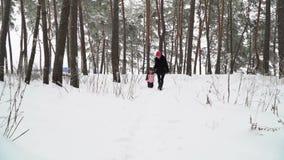 Familia que camina en un bosque nevoso almacen de video
