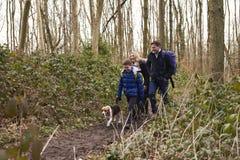 Familia que camina a través de una madera con su perro casero Fotografía de archivo libre de regalías