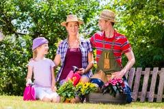 Familia que cultiva un huerto en jardín Imagen de archivo libre de regalías