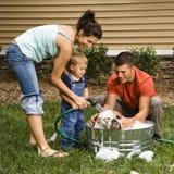 Familia que da a perro un baño. Fotos de archivo libres de regalías