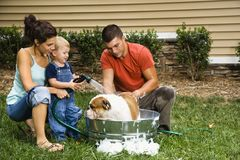 Familia que da a perro un baño. Imagen de archivo