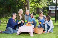 Familia que disfruta de comida campestre sana en parque Foto de archivo libre de regalías