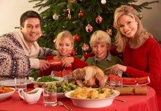 Familia que disfruta de la comida de la Navidad en el país imagen de archivo libre de regalías