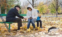 Familia que juega a ajedrez en el parque con su gato Fotos de archivo libres de regalías