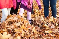 Familia que juega en hojas de otoño coloridas, Canadá Fotografía de archivo libre de regalías