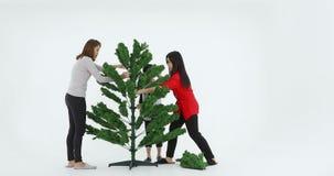 Familia que junta la pieza del árbol de navidad metrajes