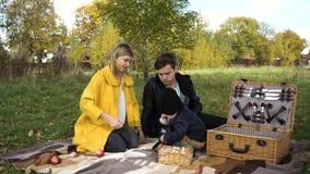 Familia que merienda en el campo en el parque almacen de video