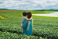 Familia que mira el campo de la plantación de té Fotografía de archivo