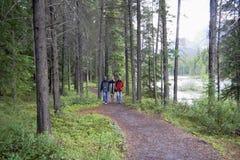 Familia que recorre en las maderas Imagen de archivo