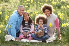 Familia que se relaja en el campo de los narcisos del resorte Imagen de archivo libre de regalías