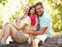 Familia que se sienta en árbol en parque fotografía de archivo