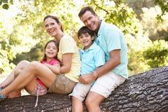 Familia que se sienta en árbol en parque imagenes de archivo