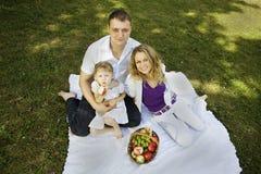 Familia que tiene comida campestre en el parque Fotos de archivo libres de regalías