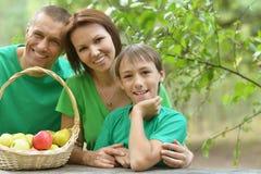 Familia que tiene comida campestre en parque del verano Foto de archivo