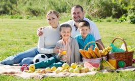 Familia que tiene una comida campestre Foto de archivo
