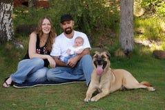 Familia sonriente joven y su perro en el parque Foto de archivo libre de regalías