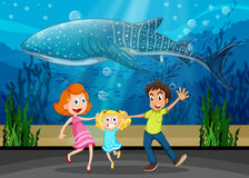 Familia y ballena de la matanza en acuario Imagen de archivo libre de regalías