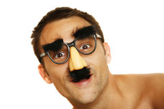 Familiar Face royalty free stock images