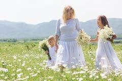 Familie auf dem Blumengebiet Stockfotos