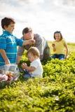Familie auf dem Gras Lizenzfreie Stockbilder