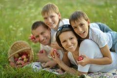 Familie auf einem Picknick Lizenzfreie Stockfotos