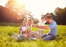 Familie auf Picknick im Park lizenzfreie stockfotos