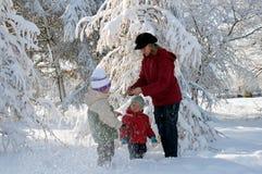 Familie in de winterpark Stock Afbeeldingen