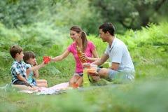 Familie des fourv, das ein Picknick hat Stockfotografie