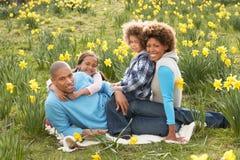 Familie, die auf dem Gebiet der Frühlings-Narzissen sich entspannt Lizenzfreie Stockfotos