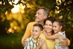Familie die in de zomerpark rusten Stock Afbeelding
