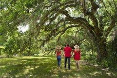 Familie, die in den schönen Park auf Frühlingsmorgen geht lizenzfreie stockfotografie
