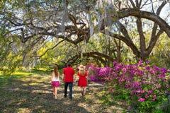 Familie, die in den schönen Park auf Frühlingsmorgen geht stockbilder