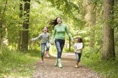 Familie, die durch Holz läuft Stockfoto